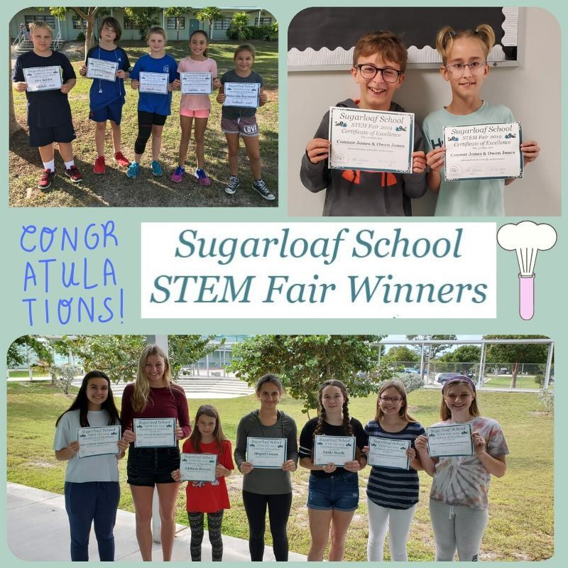 Collage of sugarloaf school stem fair winners for 2020